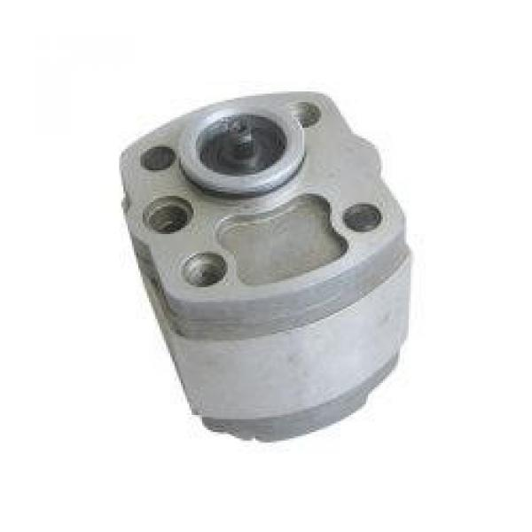 IPH-5B-50-11 Гідравлічний насос-шестерня