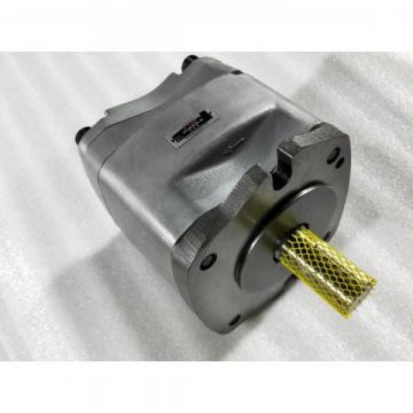 25MCM14-1B Гідравлічний поршневий насос / двигун